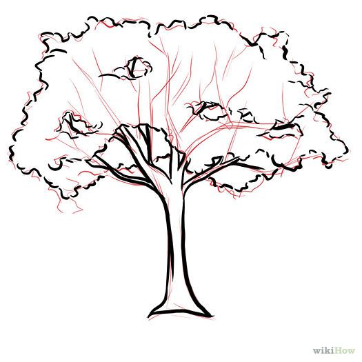 Simple Drawing Of A Tree
