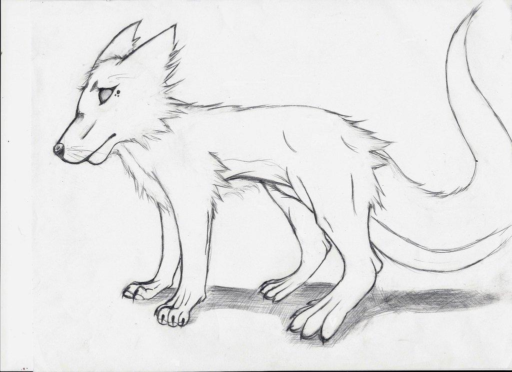1024x745 Simple Wolf Sketch By Hetaliashero