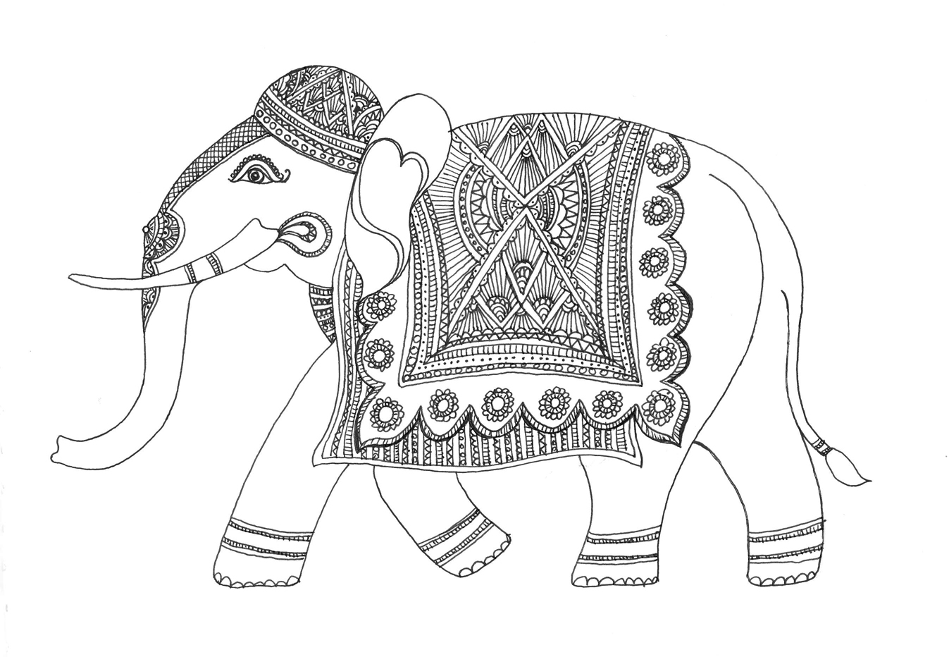 1347x932 Sketch Of An Elephant Drawing Pics