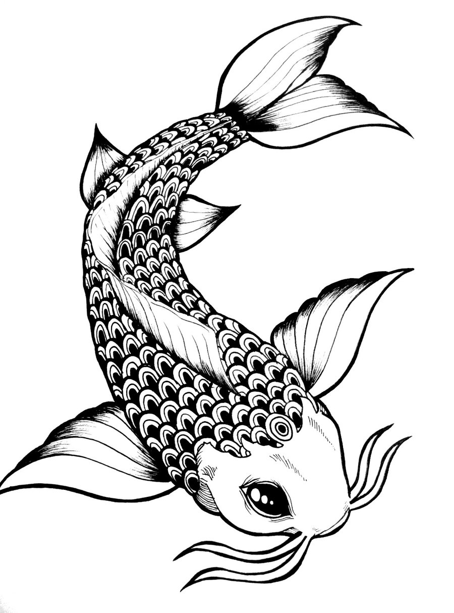900x1214 Drawn Koi Fish Black And White