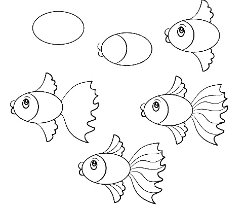 486x406 How To Draw A Simple Fish Step By Step With Pencil, Part 4