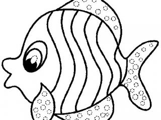 320x240 Printable Fish Coloring Pages Simple Ideas Printable Fish Coloring