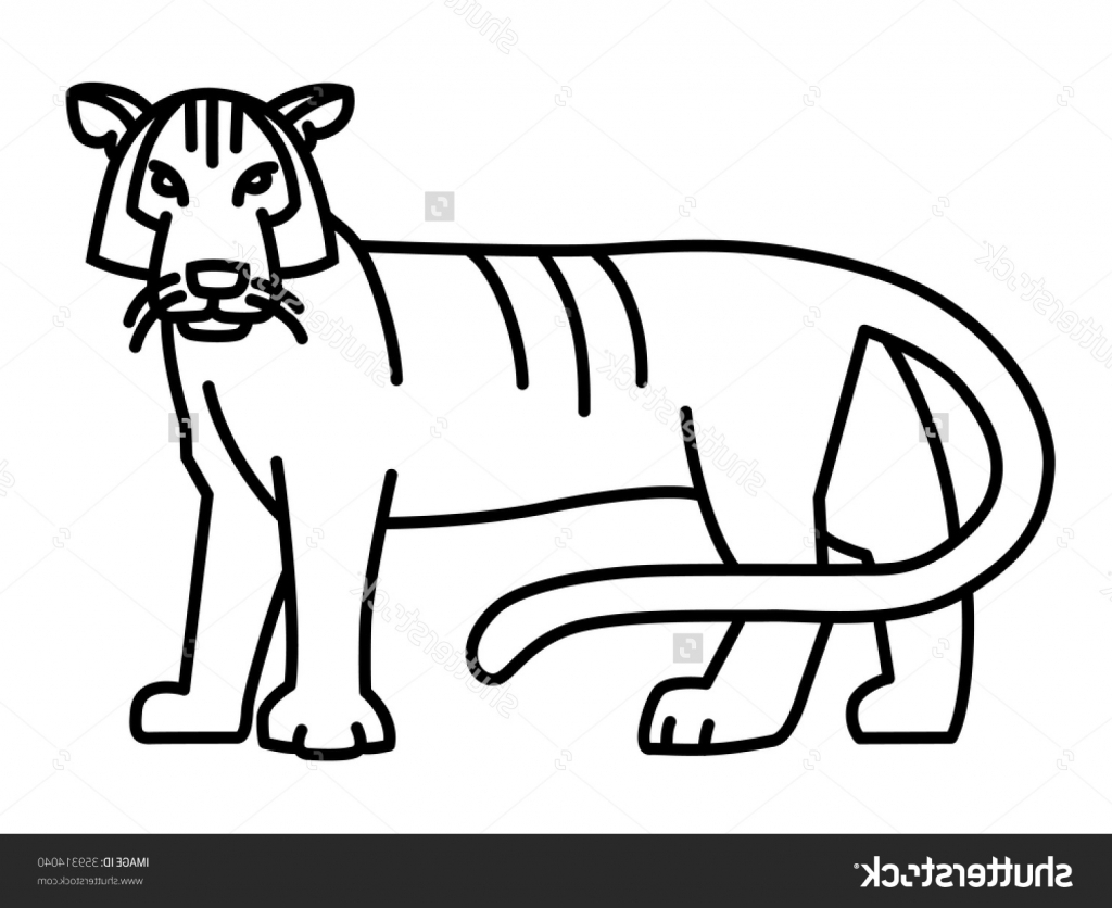 1024x836 Tiger Simple Drawing Tiger Drawing Simple How To Draw An Easy