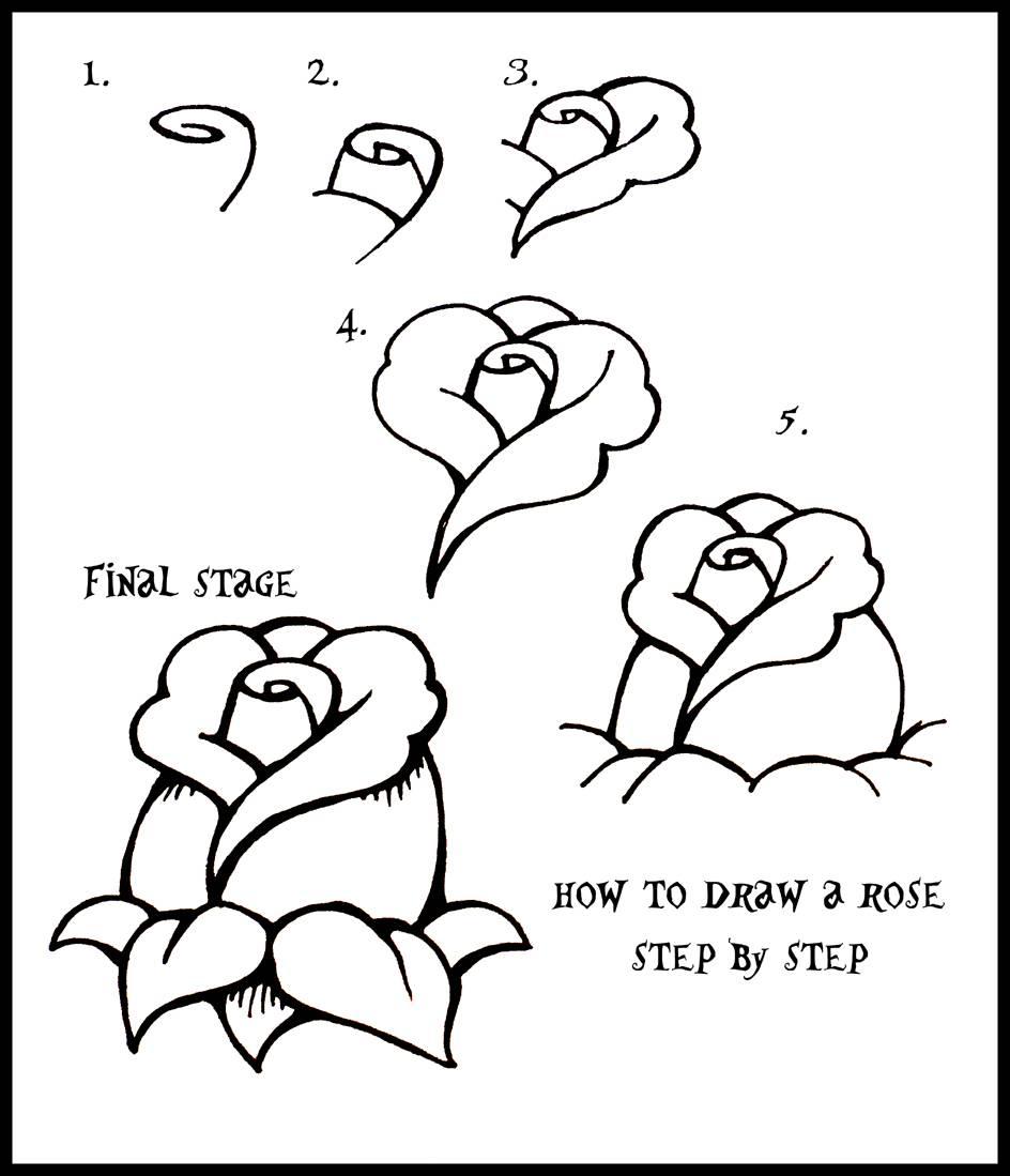 944x1099 Easy Drawings Roses Step Step Drawings Easy