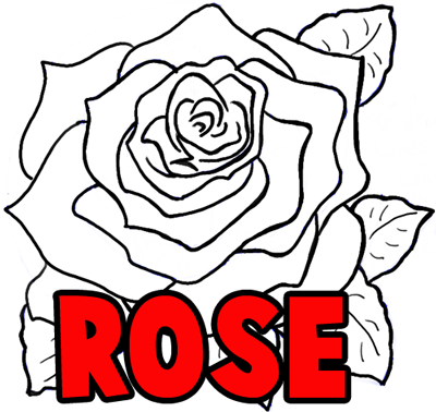400x378 How To Draw Roses Opening In Full Bloom Step By Step Drawing