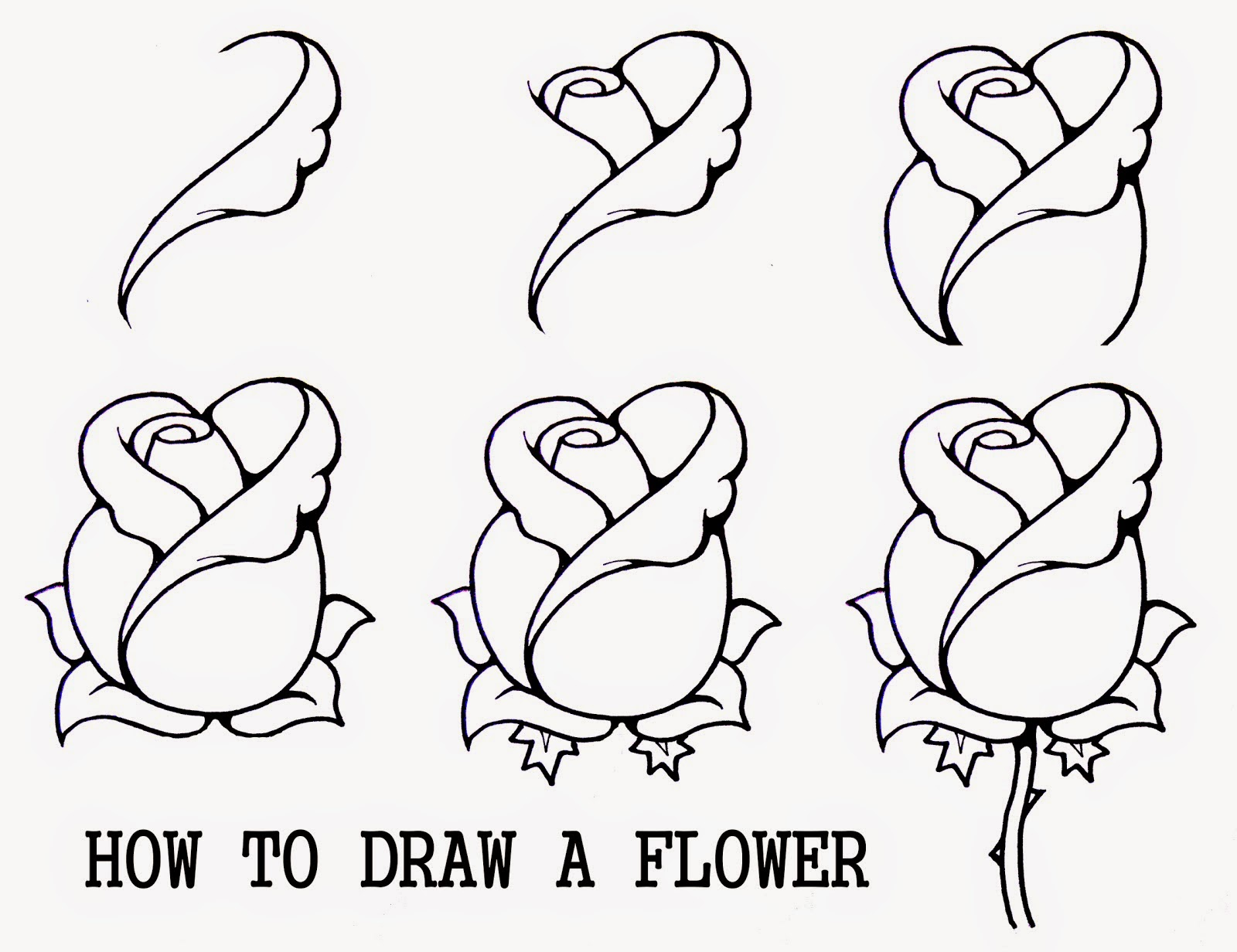 1600x1232 How To Draw A Flower Easy Step By Step