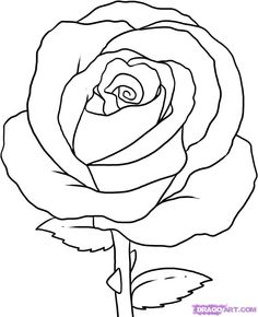 236x290 How To Draw Simple How To Draw A Simple Rose, Step By Step