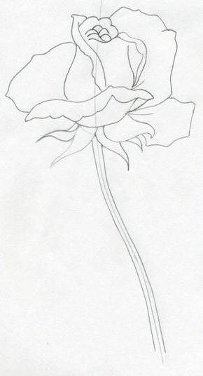 290x537 Draw A Rose Quickly, Simply And Easily Drawings