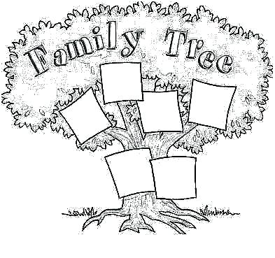 393x369 Family Tree Coloring Page Tree Trunk Coloring Page Family Tree