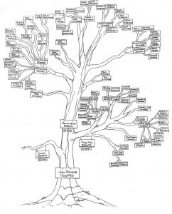 family tree diagrams vatoz atozdevelopment co