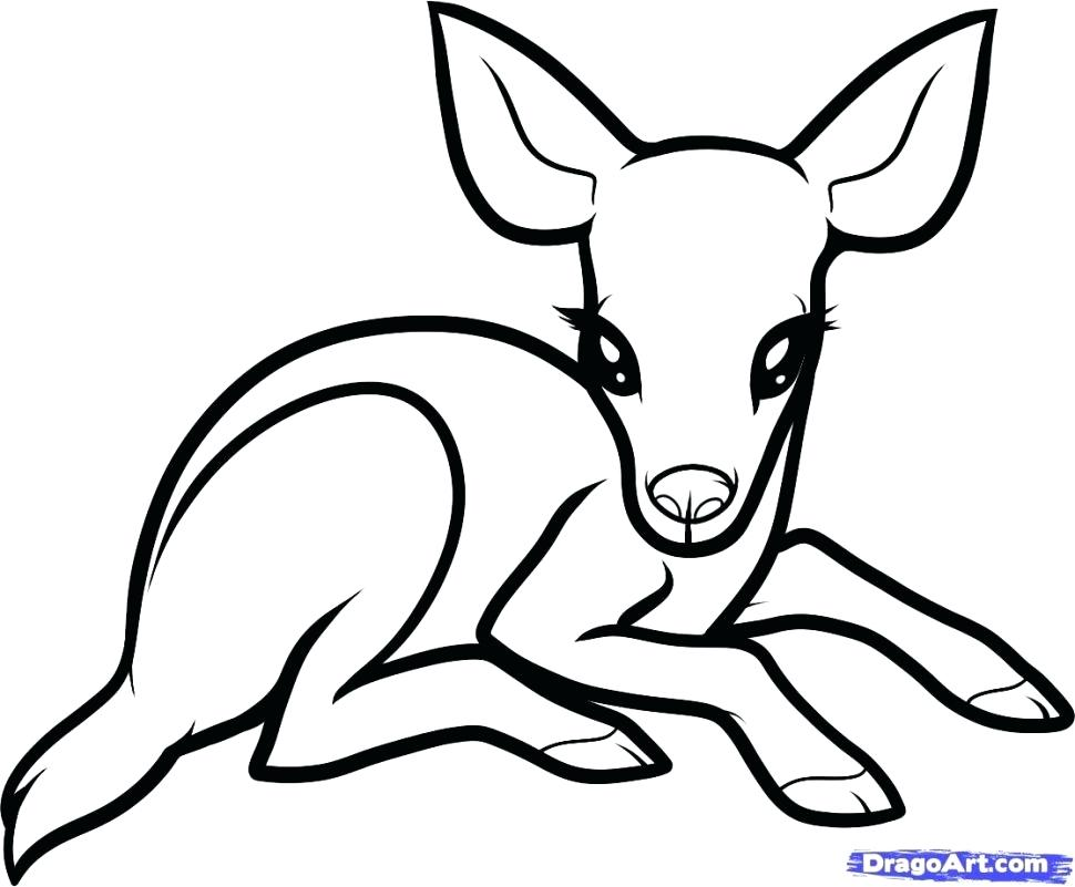 970x801 Easy Animal Coloring Pages Cute Easy Animals To Draw Best Cute