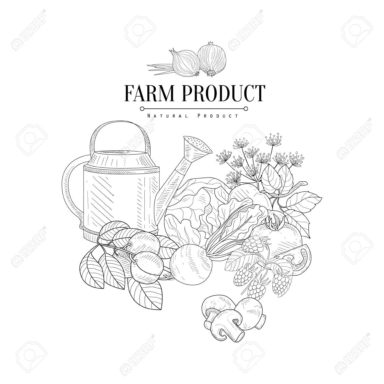 1300x1300 Farm Product Hand Drawn Realistic Detailed Sketch In Classy Simple