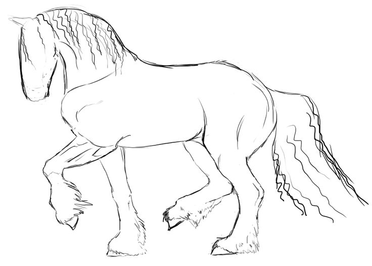 736x527 The Best Simple Horse Drawing Ideas On Horse