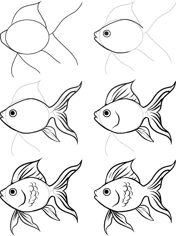 simple fish drawing at getdrawings com