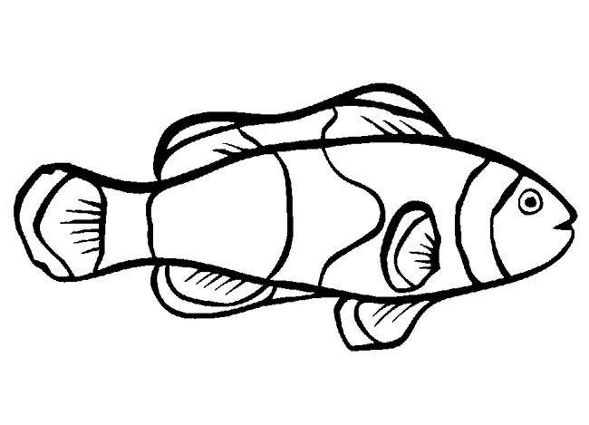 Simple Fish Drawing at GetDrawingscom Free for personal use