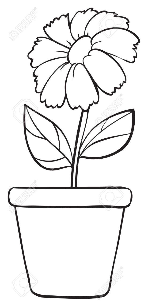 631x1300 Simple Flower Pot Drawing