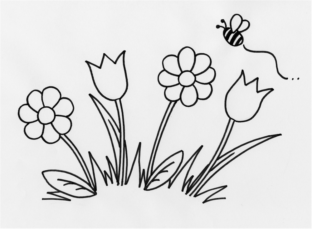 Draw Spring Flowers Step Flowers Healthy