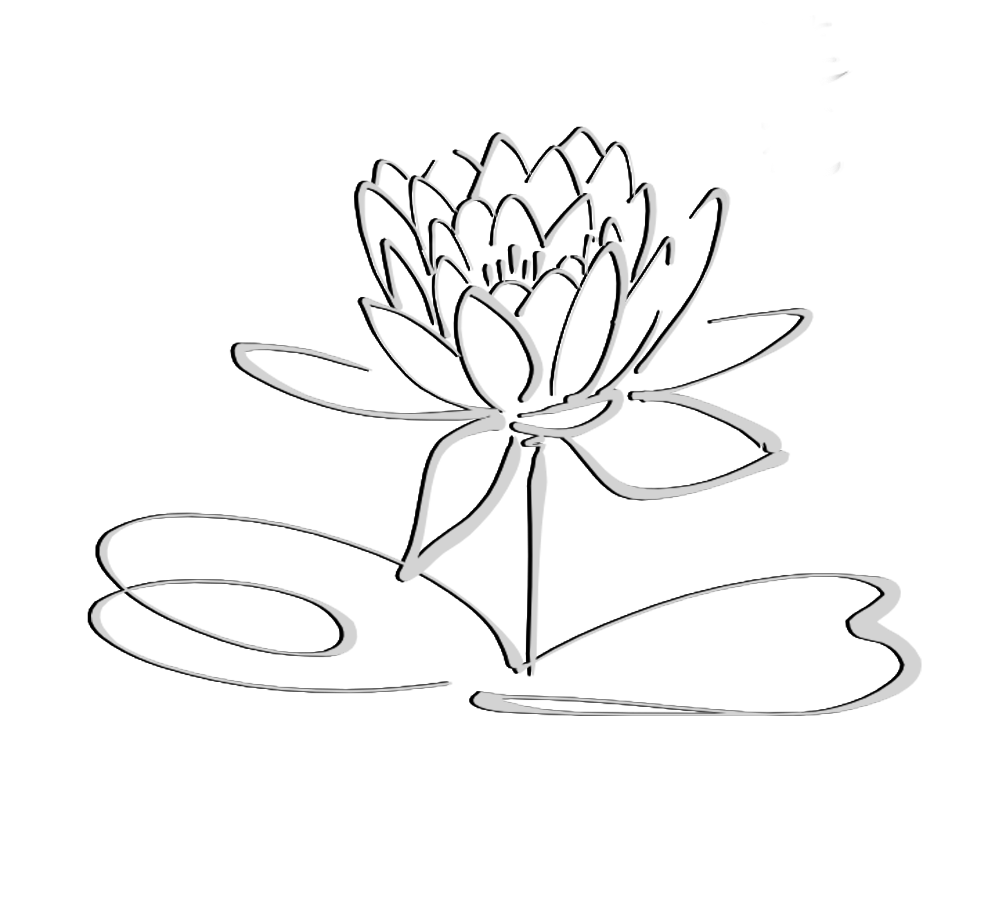 3263x3058 Drawn Line Art Lotus Flower