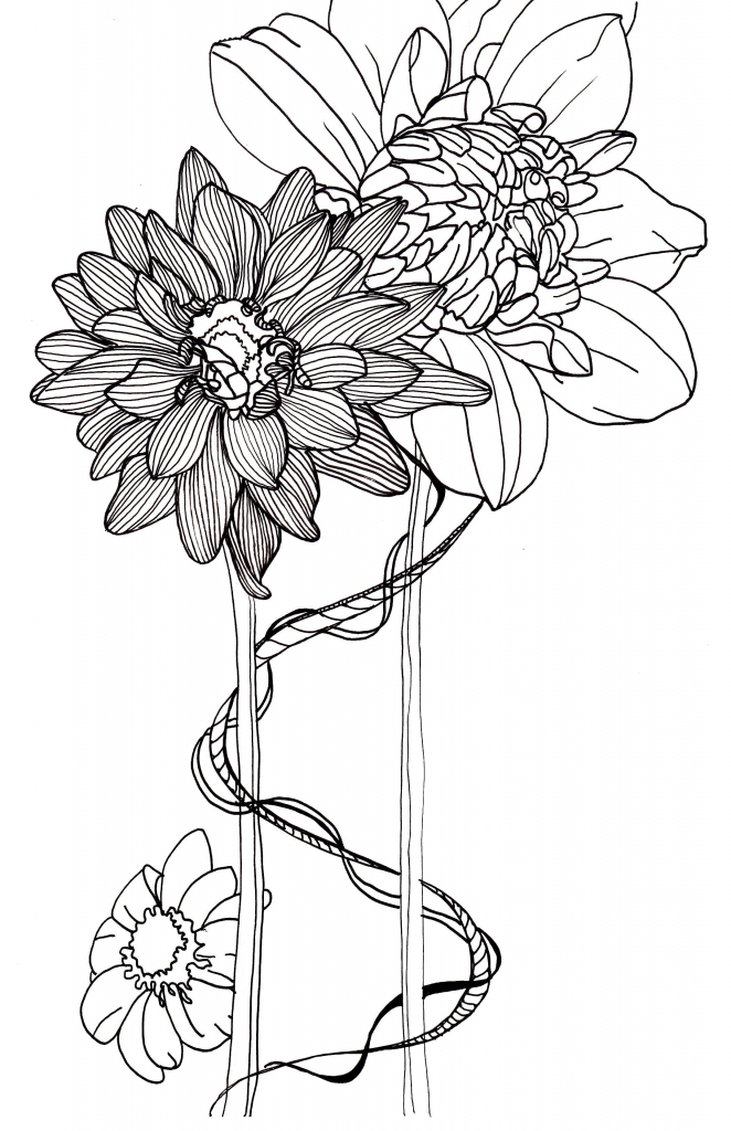 662x1024 Flower Line Drawings 1000 Images About Simple Flower