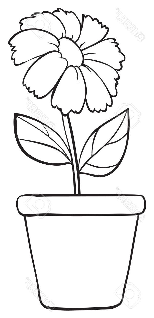 631x1300 Simple Flower Pot Sketches Best Flower Line Drawings Ideas