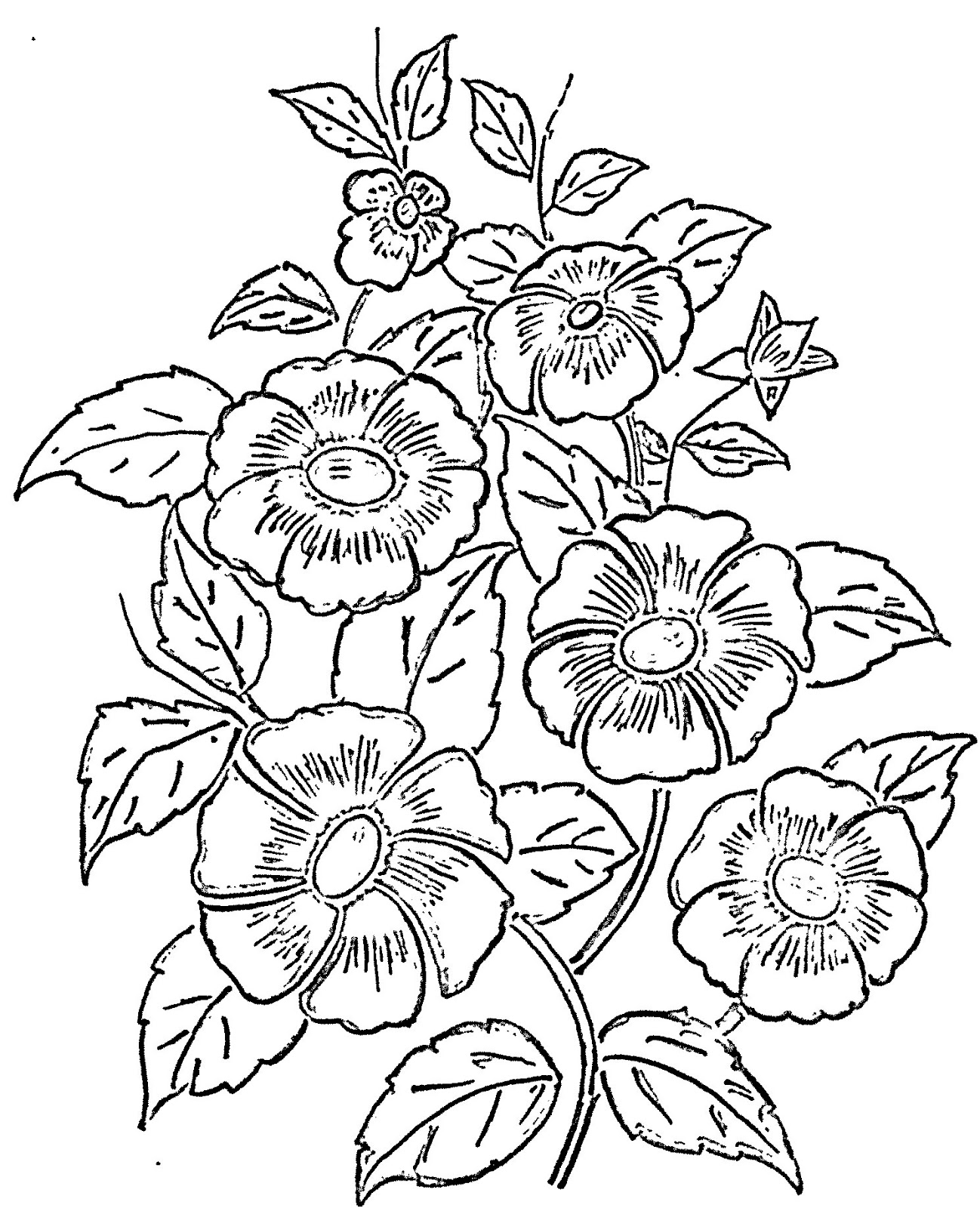 Flower Designs Patterns To Draw Flowers Healthy