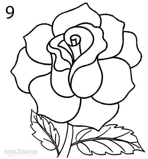 500x536 How To Draw A Realistic Rose Step 9 Rose