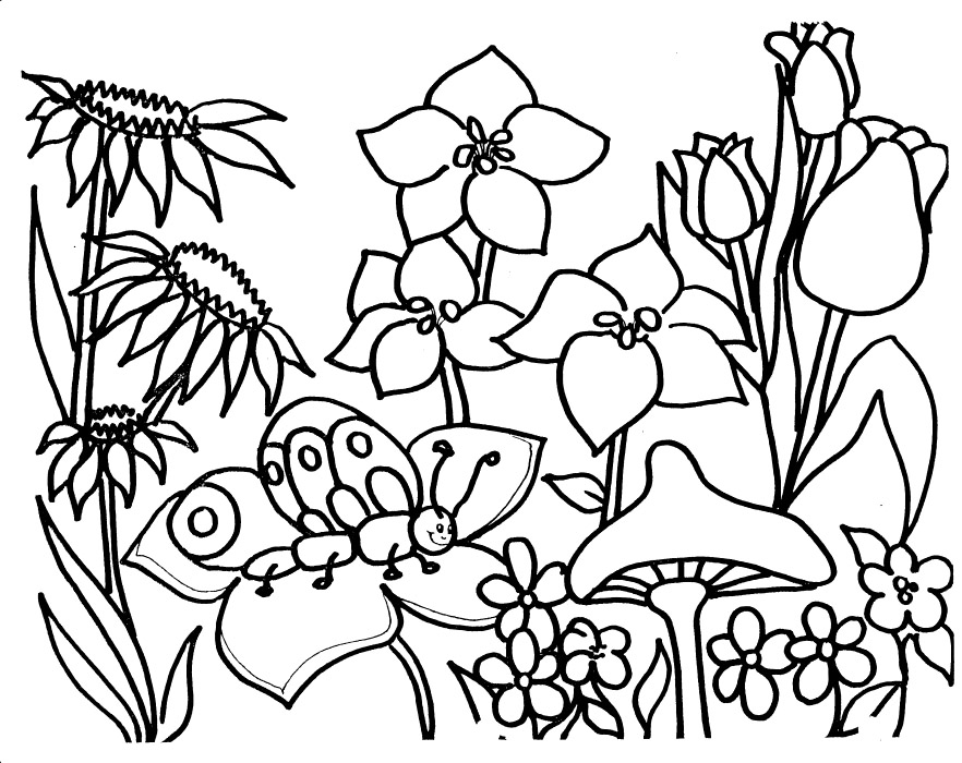 882x700 simple garden coloring pages