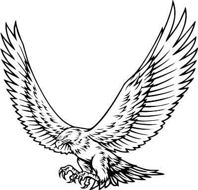 simple hawk drawing at getdrawings com free for personal use rh getdrawings com hawk clipart easy