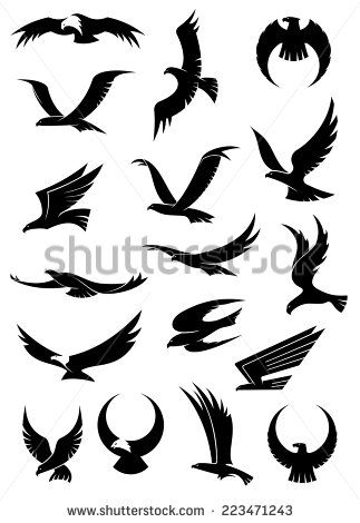 323x470 Image Result For Hawk Silhouette Protection Hawk