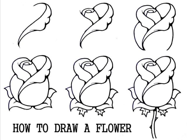 640x480 The Images Collection Of Tutorials Tumblr How Rose Tutorial