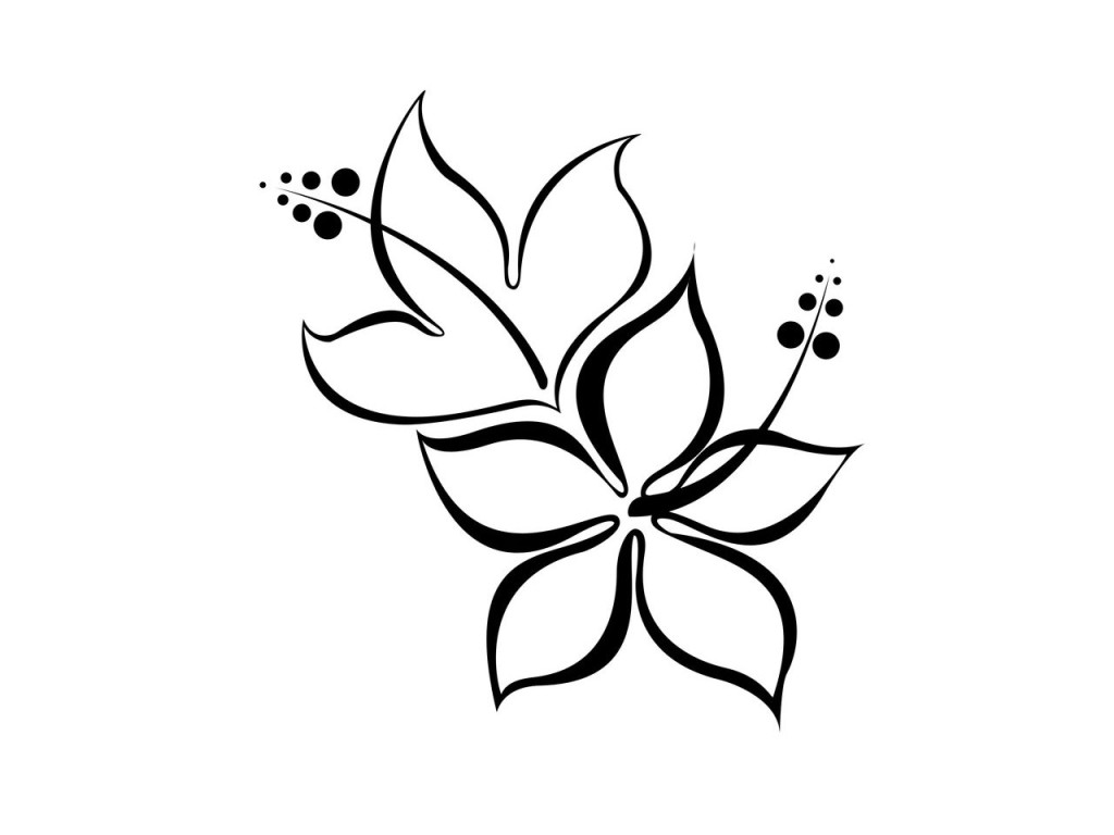1024x768 Simple Hibiscus Drawing Clipart Panda