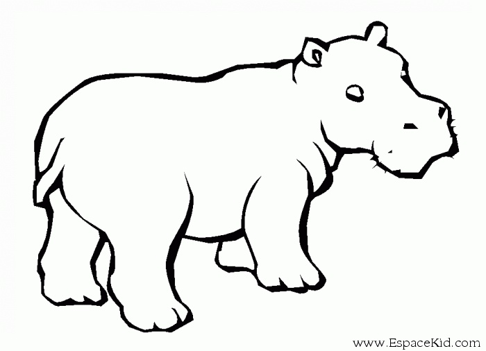 700x506 Image Result For Hippopotamus Calf Tattoos
