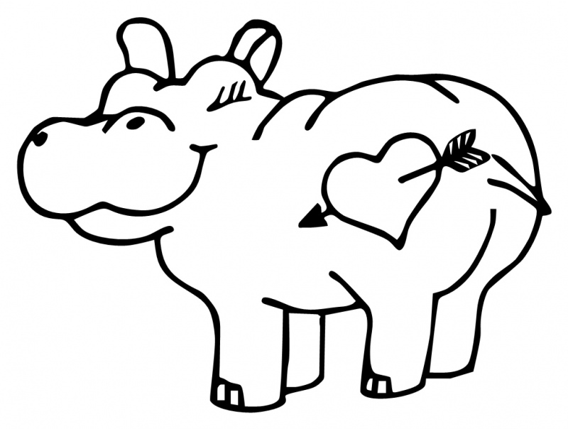 800x604 Cute Hippo Drawing Quilting