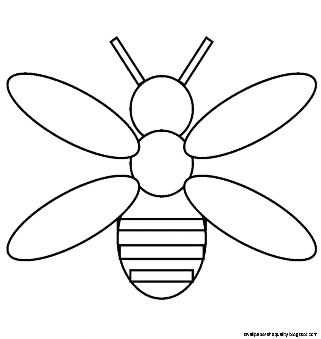 Simple Insect Drawing at GetDrawings.com | Free for personal use ...