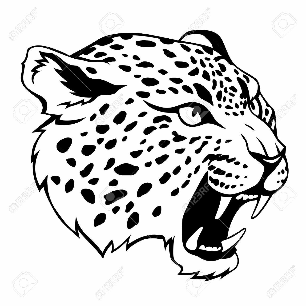 Asombroso Página Para Colorear De Jaguar Negro Viñeta - Enmarcado ...