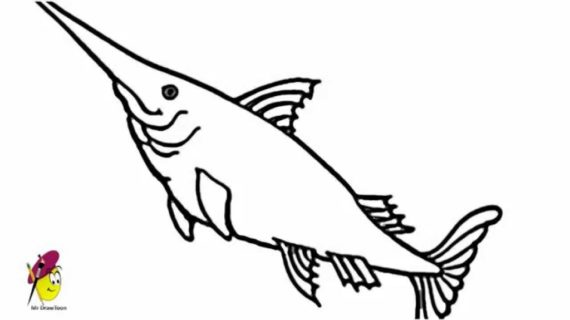 570x320 Easy Fish Drawings Swordfish How To Draw Sword Fish Easy Drawing