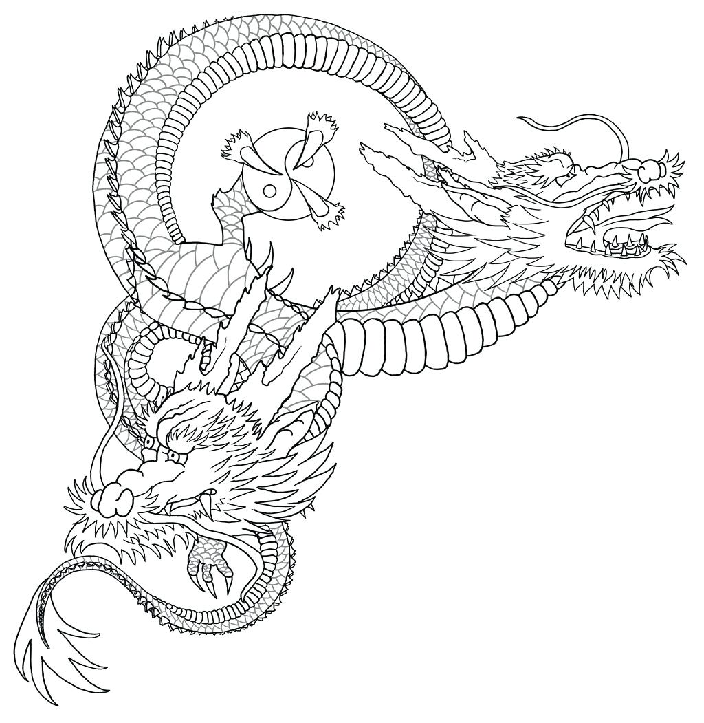 1024x1051 Vector Graphic Outline Of A Frilled Dragon Stock Koi Fish Drawing