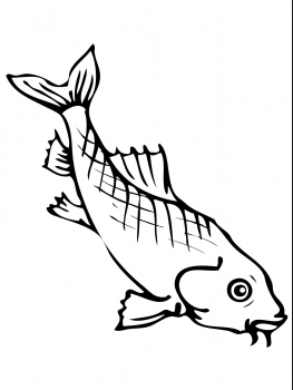 263x350 Asian Carp Coloring Page Amp Coloring Book