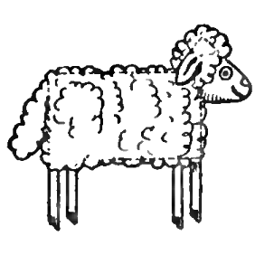 282x282 How To Draw Sheep Amp Lambs With Easy Drawing Lesson