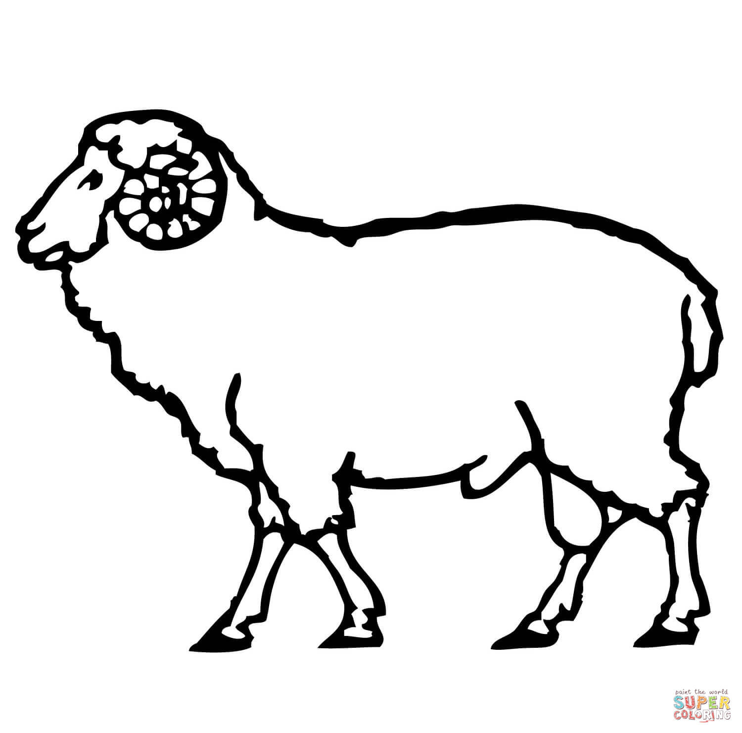 1500x1480 Domestic Sheep Coloring Pages Free Coloring Pages