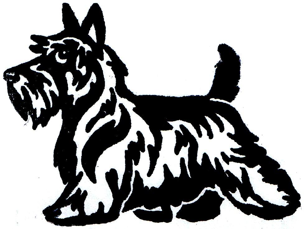 977x737 Scottish Terrier Drawing Scottish Terrier Graphic