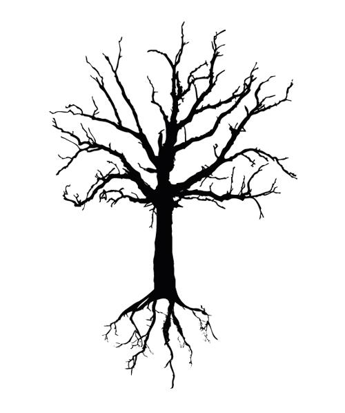 500x598 Simple Tree Drawing Clip Art