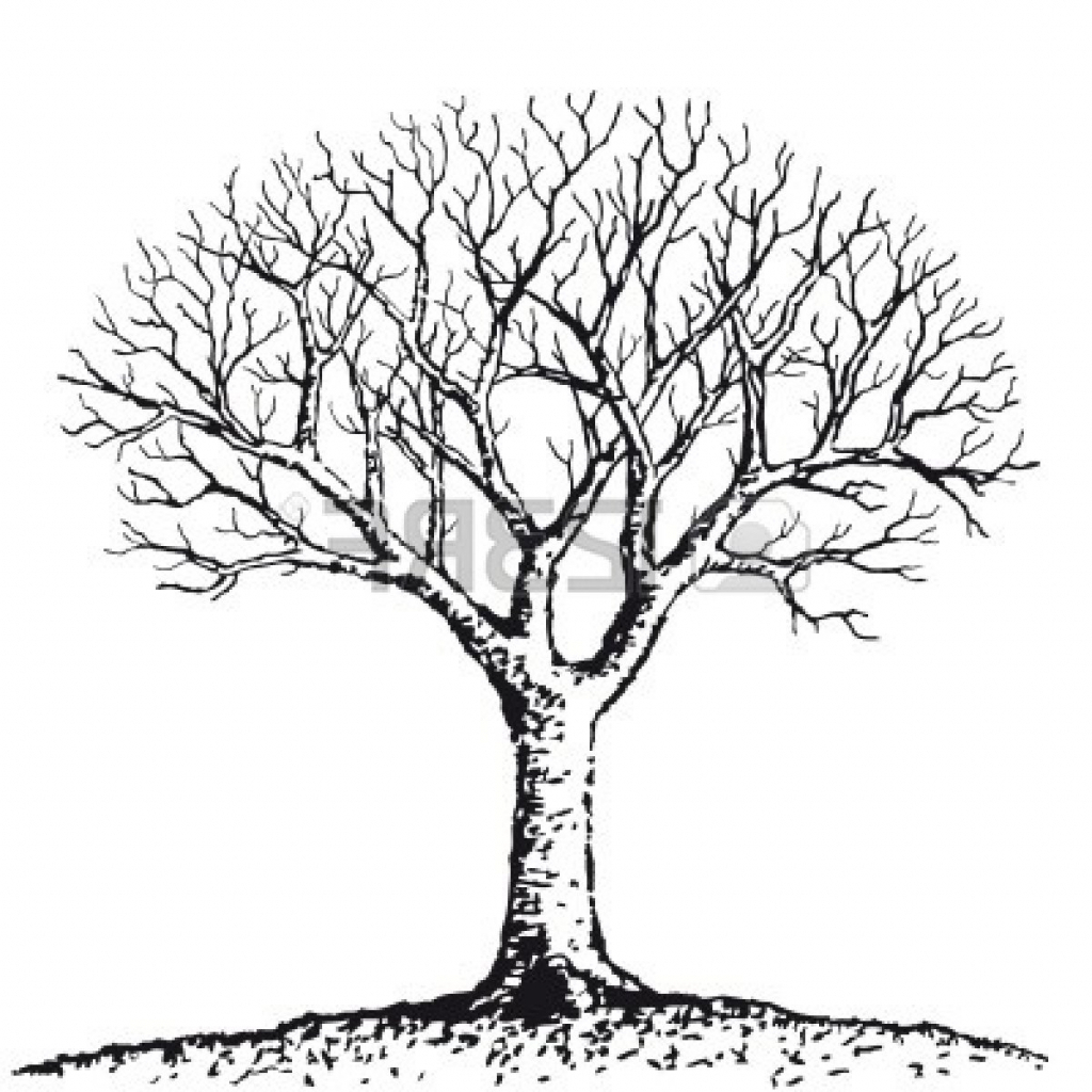 1024x1024 Black And White Tree Drawings