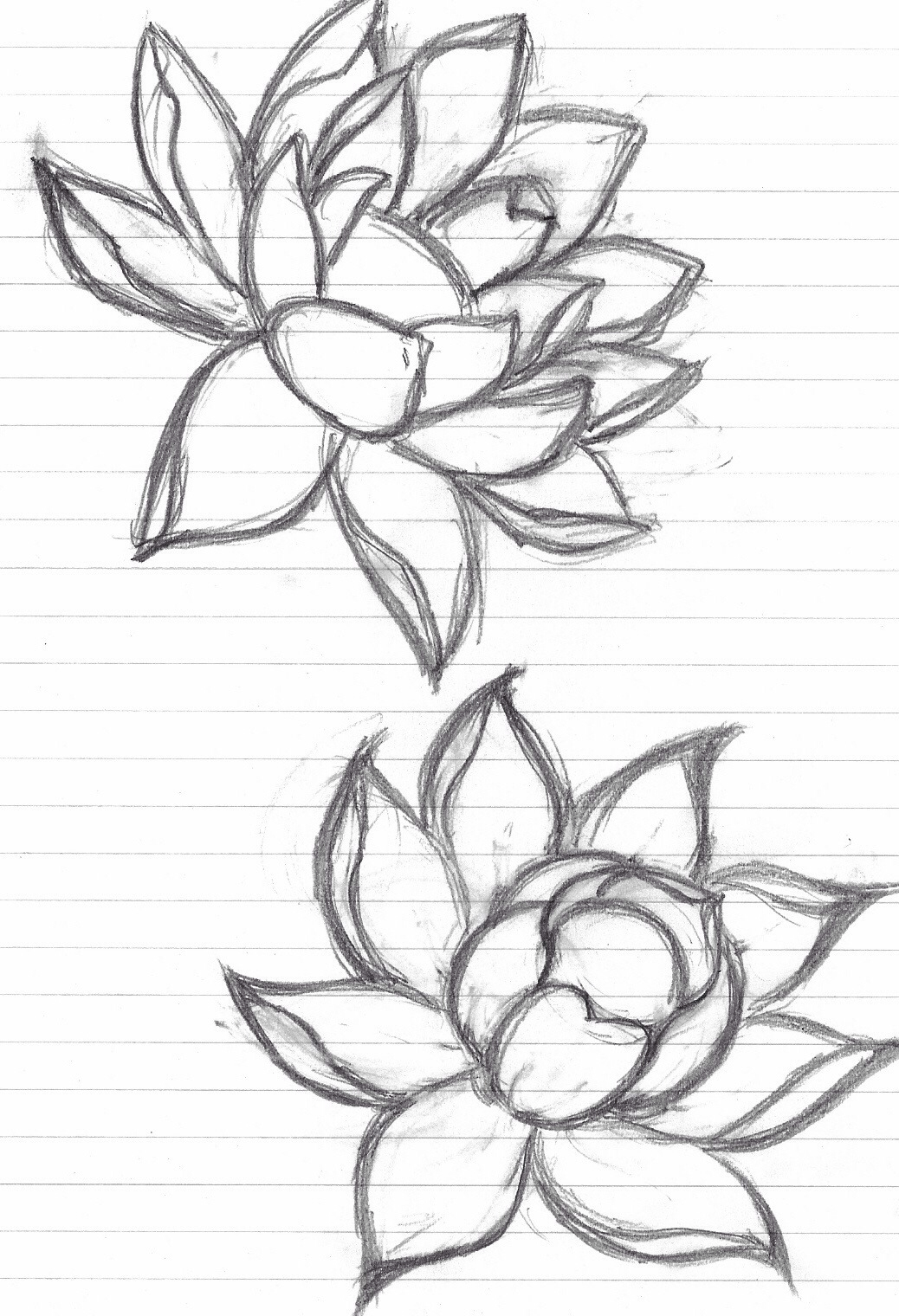 1038x1520 I Love Lotus Flower Tattoos Tattoos Flower Tattoos