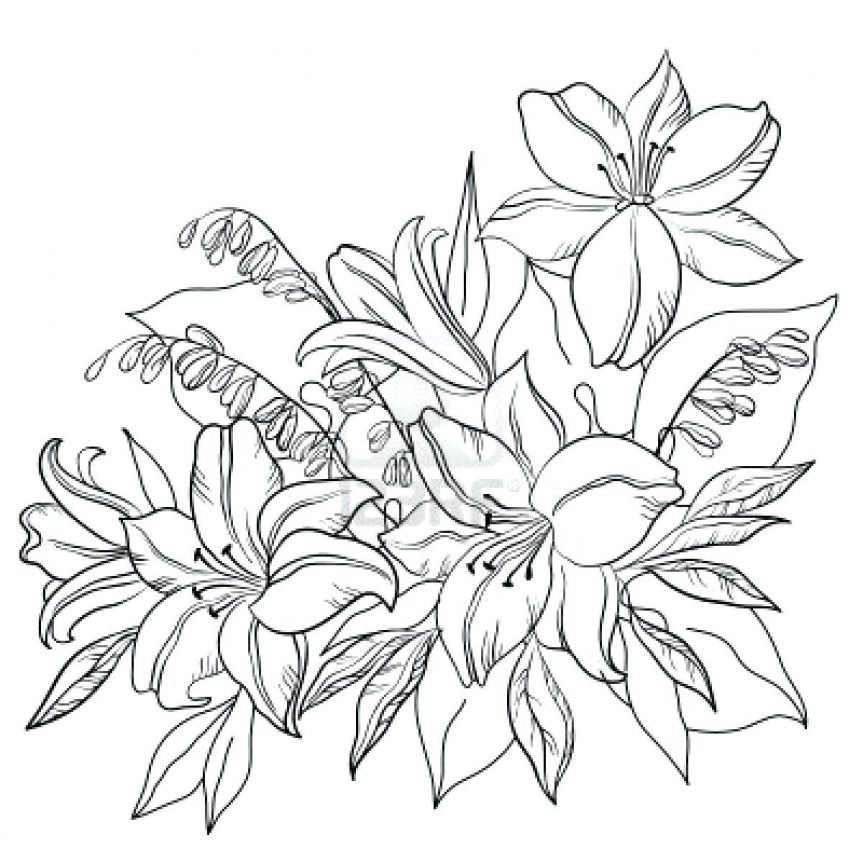 863x863 Outline Of Flowers For Drawing Lily Flower Tattoos Piercings Cute
