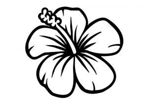 300x210 The Images Collection Of Drawing Ideas Easy Flowers Lotus Tattoo