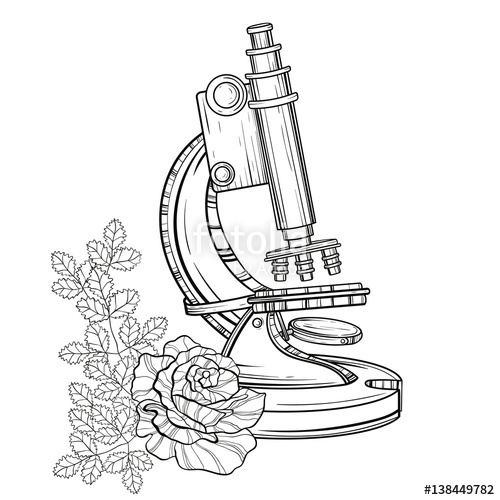 500x500 Vector Old Microscope With Roses. Vintage Hand Drawn Illustration