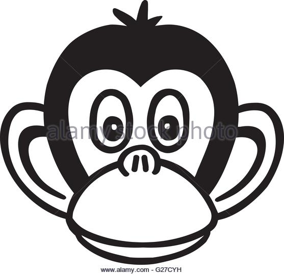 557x540 Chimpanzee Head Style Stock Photos Amp Chimpanzee Head Style Stock