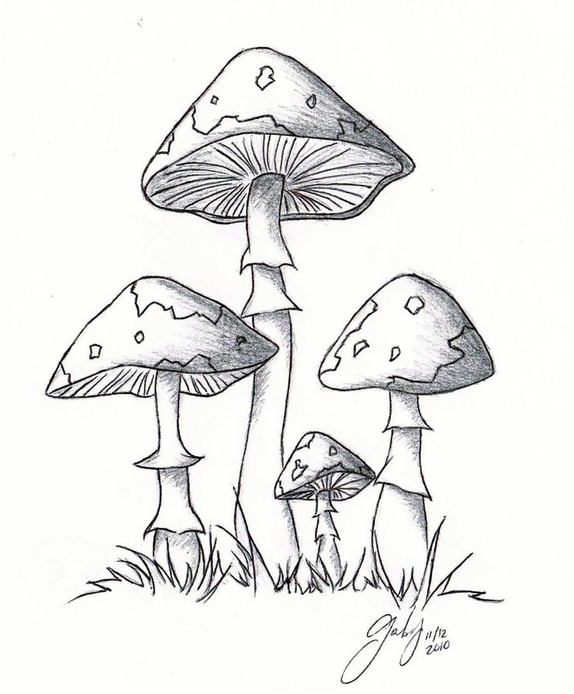 Simple Mushroom Drawing