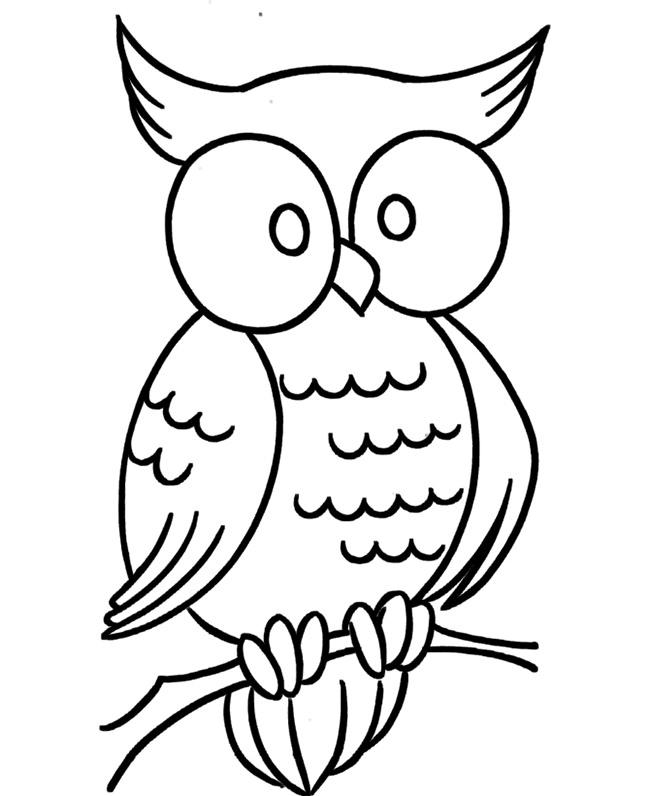 Simple Owl Drawing At GetDrawings